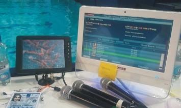 Europese Kampioenschappen schoonspringen en synchroonzwemmen 2012